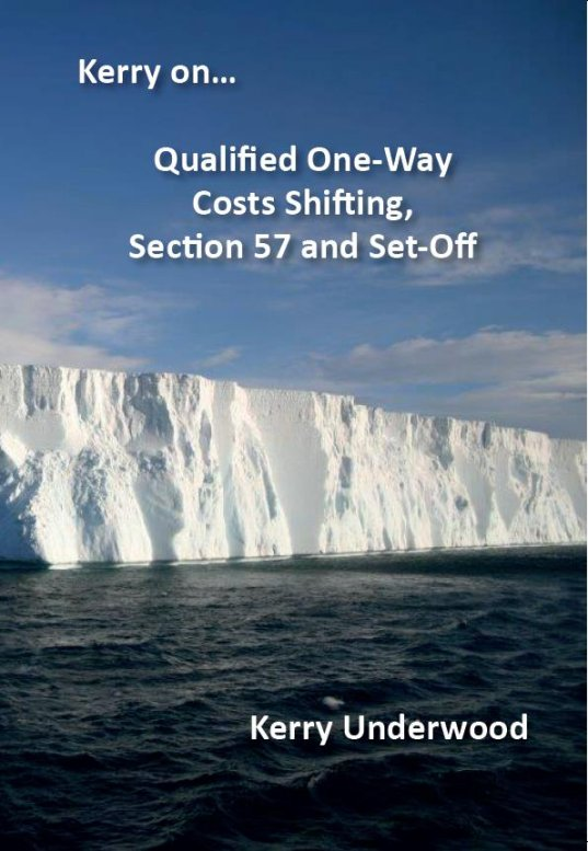 Qualified One-way Costs Shifting Book Cover